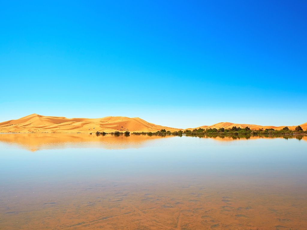 Merzouga Lake Morocco