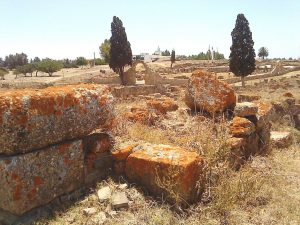 Iulia Valentia Banasa Roman City Archaeological site Morocco
