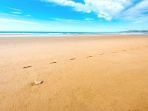 Sidi Kaouki beach in Morocco
